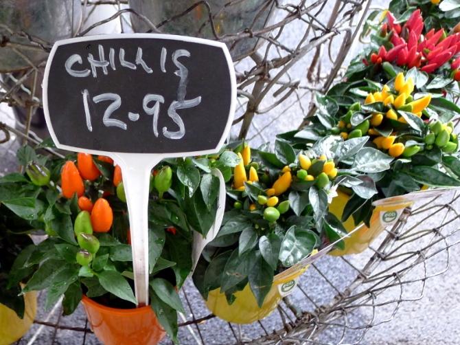chillis_s