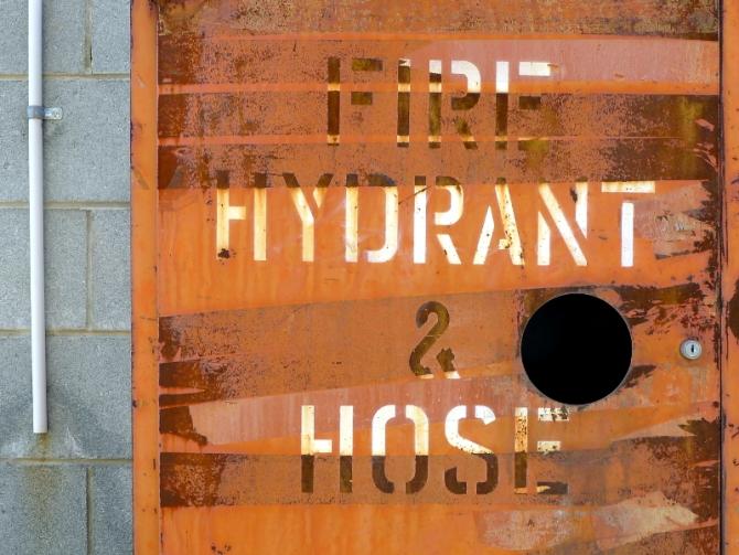firehydranthose_s